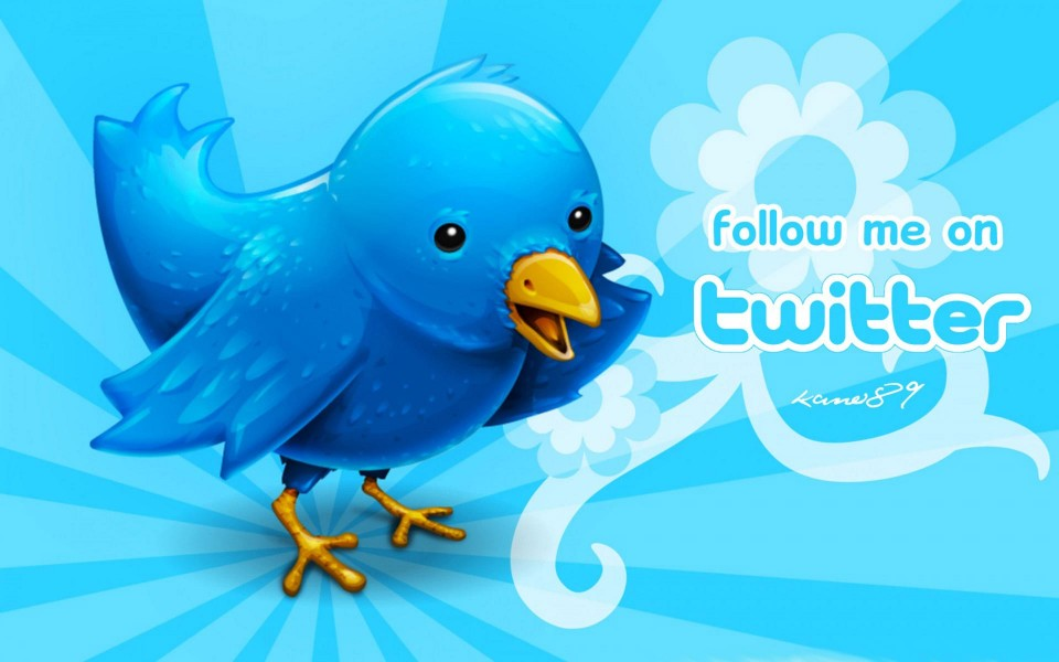 Opportunità e sfide per le imprese da Facebook e Twitter